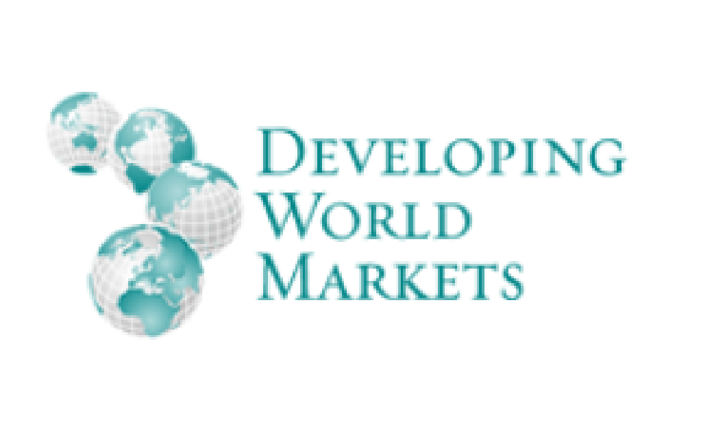 investors and lenders DWM